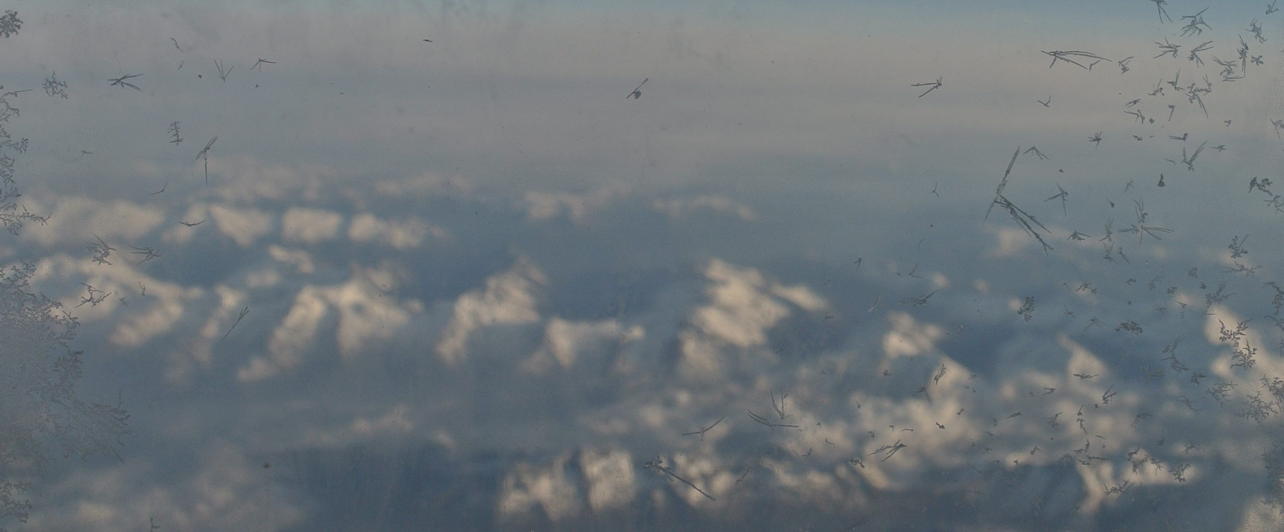 Frost accumulating on the outside of our plane window, above the Swiss Alps.